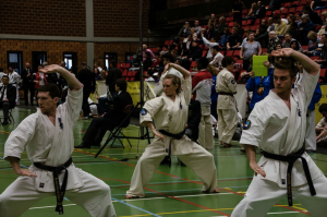 IFK World Championship Kata 2014, by Dave Geentjens