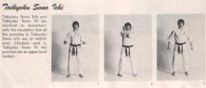 TaikyoukuSonoIchi1