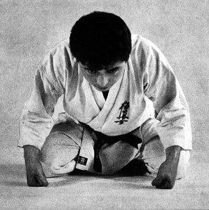 Kyokushinkai zarei